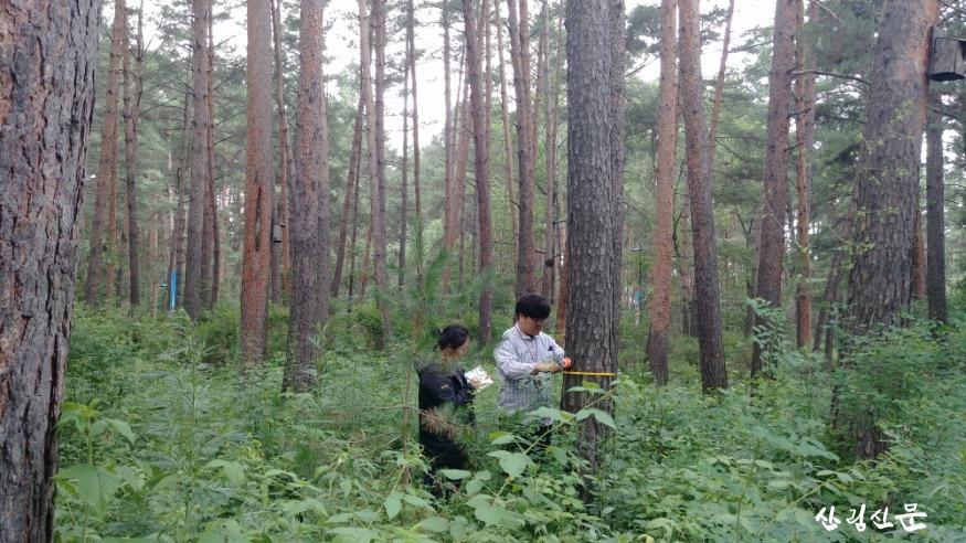 크기변환_중국 현지조사팀과 산림조사를 진행하 고 있는 산림과학원 연구자1.jpg