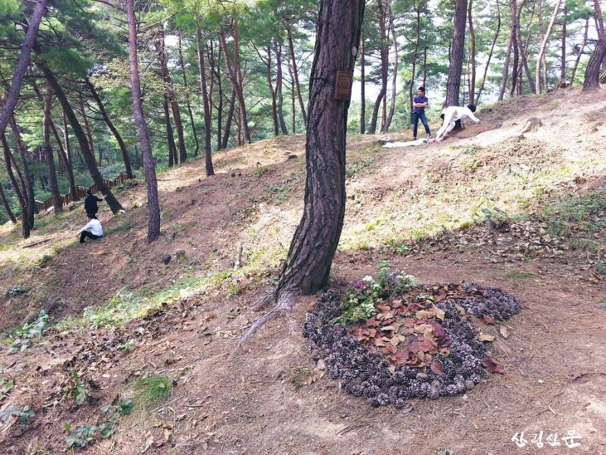 크기변환_(사진3) 국립하늘숲 추모원 전경.jpg