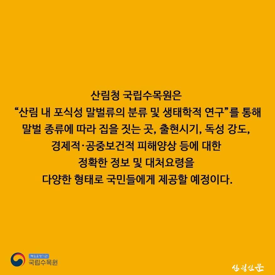 말벌카드뉴스_9.jpg
