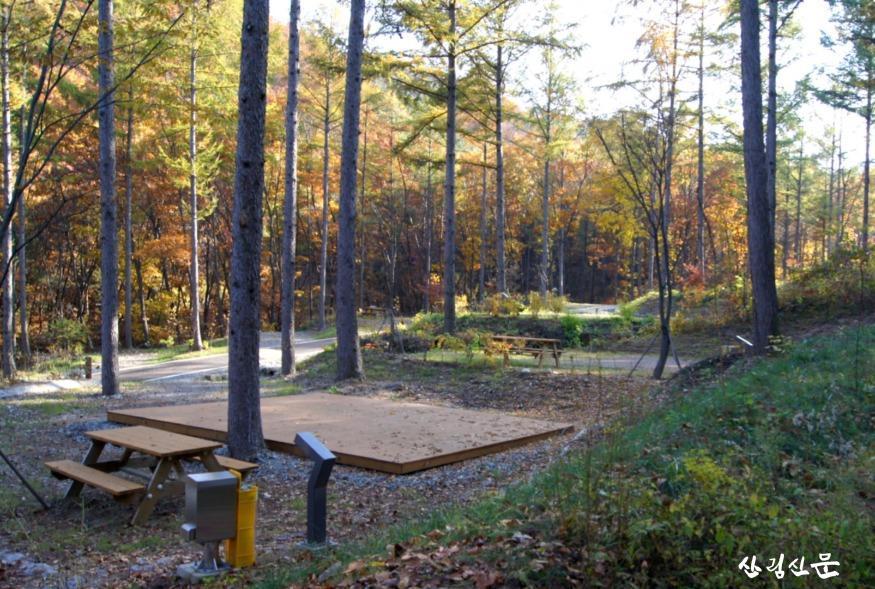 수정됨_(사진2) 전기배전함, 피크닉테이블 등이 위치한 국립화천숲속야영장 데크사이트의 모습입니다..jpg