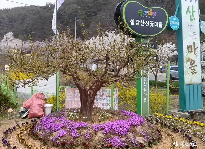 2.칠갑산산꽃마을_전경.jpg