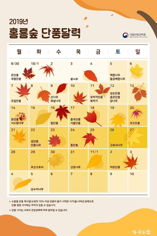 2019년 홍릉숲 단풍 달력.jpg