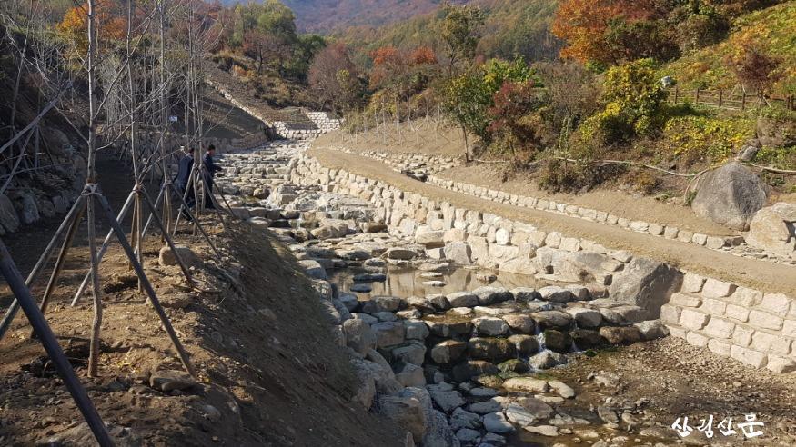 사진3_영주산림유역관리사업지 현장.jpg