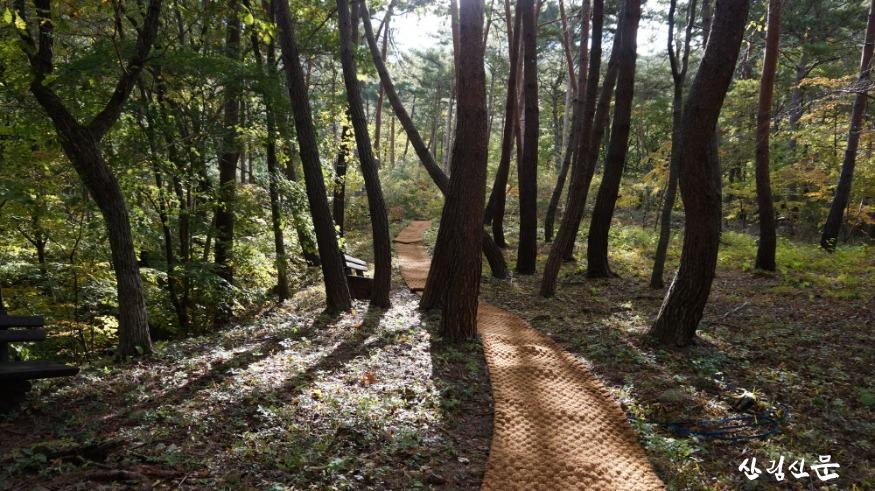 사진1_국립검마산자연휴양림 산책로.JPG