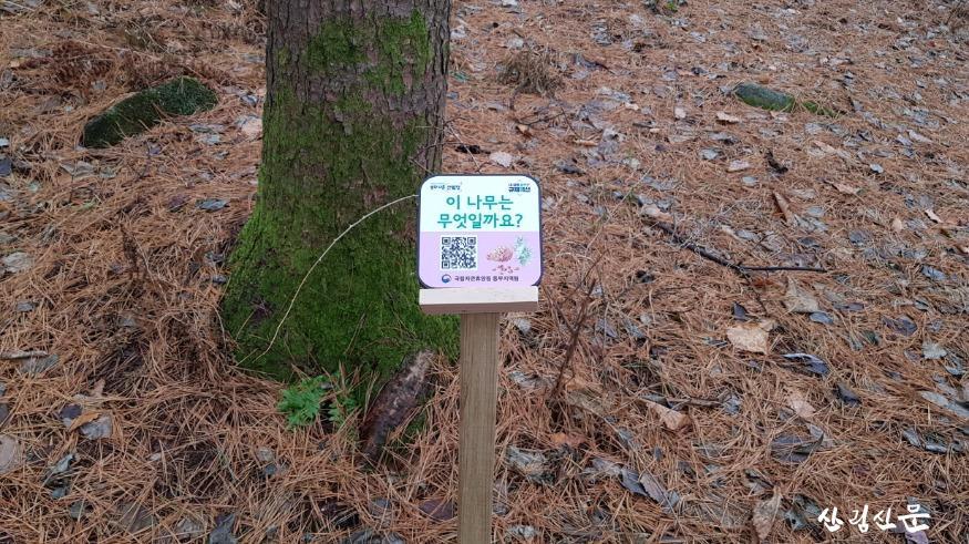 (사진 1) UCC형 숲해설을 위해 휴양림 주요 체험코스에 안내판을 설치한 모습입니다..jpg