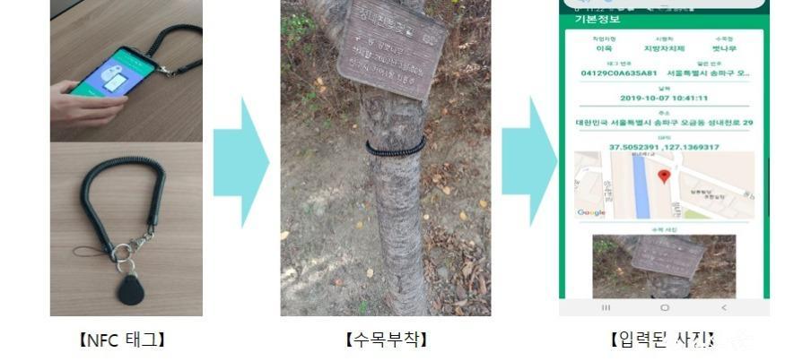 수목 관리 이력 정보화 시스템 3-NFC 태그 부착.jpg
