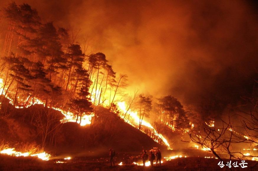 (전시사진)모든것을 집어삼킨 산불(2005 양양).jpg