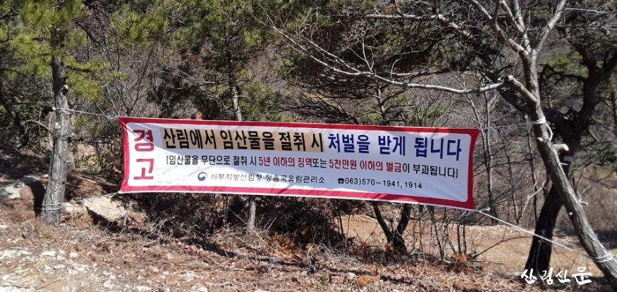 사진2_산림 내 불법행위 단속 사진.JPG