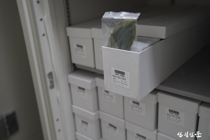 (0323)NFSV 관련사진2-산림생명자원(엽조직).jpg