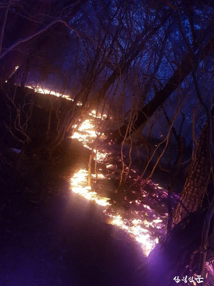 경남 양산시 상북면 산불 현장사진-1.jpg