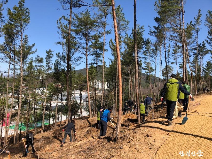 20200324-봄철 나무심기-1.jpg