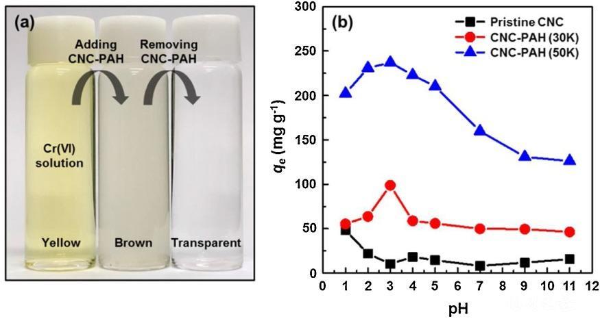 붙임자료 4. 나노셀룰로오스 기반 중금속 흡착제의 중금속 제거 성능.jpg