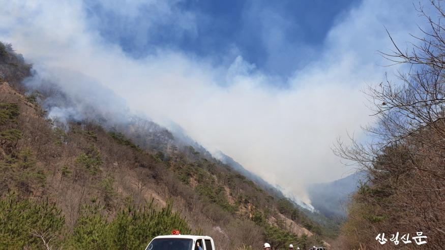 청송 산불 현장 사진(2보).JPG