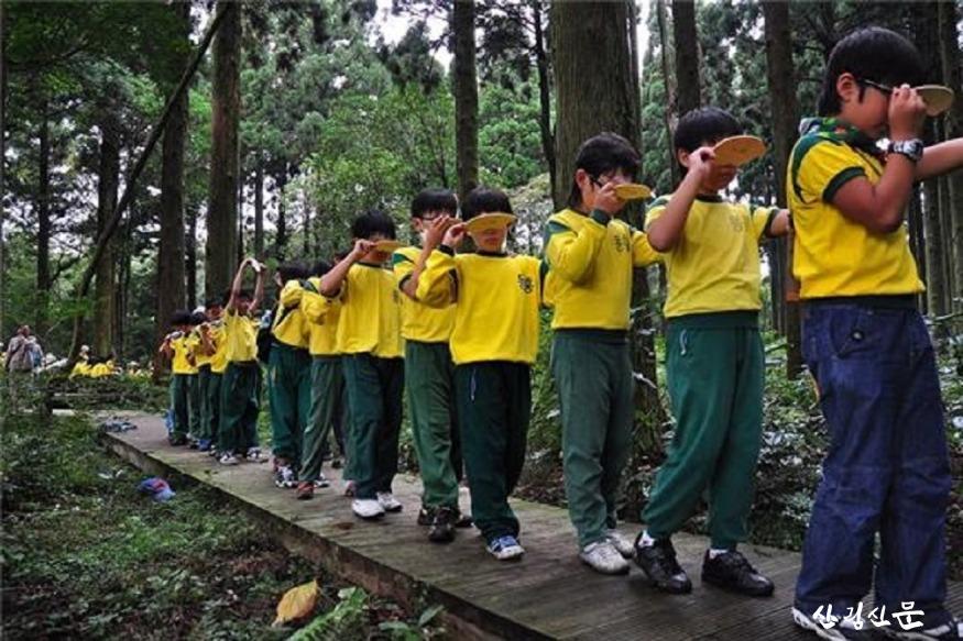 삼나무전시림 내 체험 활동.jpg