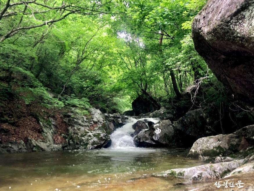 소백산자락길(죽계구곡)_200527 (4).jpg