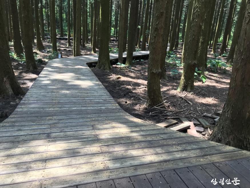 산림휴양관리소_무장애나눔길 데크로드.jpg