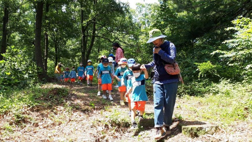 산림교육.jpg