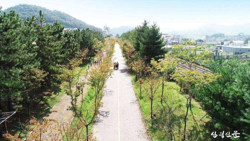사진1_전남 순천시 가로수길(2019년 녹색도시우수사례).jpg