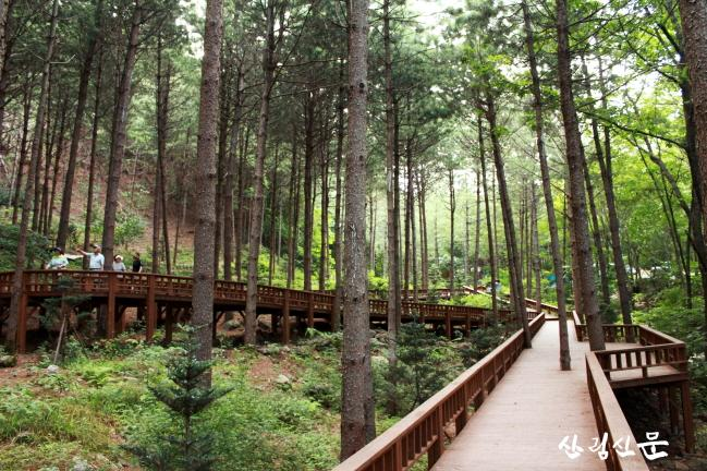 (사진3) 산음자연휴양림 치유의 숲길 데크로드 전경입니다..JPG