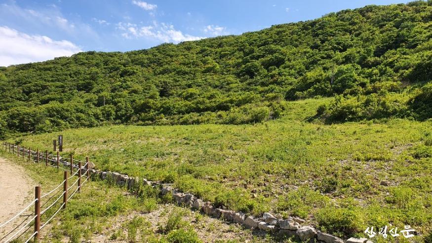 군사시설 철거 후 산림복원된 광경 (1).jpg