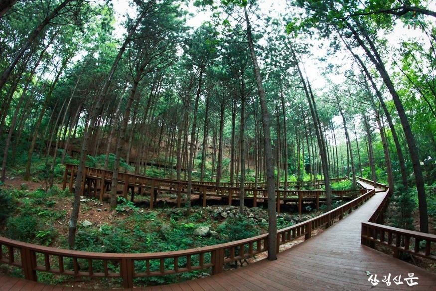 (사진 2) 국립산음자연휴양림 데크로드 모습입니다...jpg