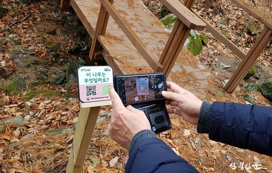 (사진 1) QR코드를 활용하여 숲해설 동영상을 체험하는 모습입니다..jpg