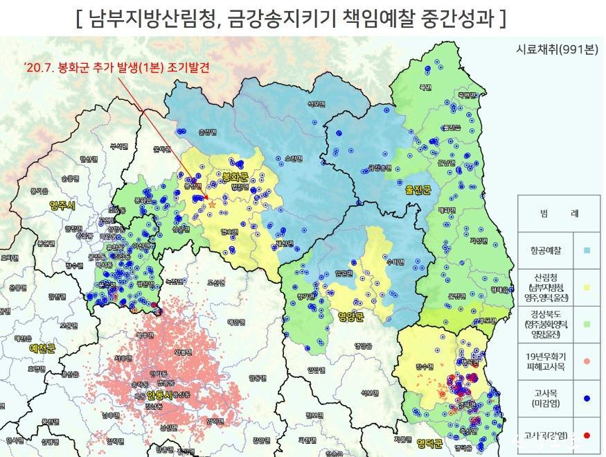관련사진2_금강송지키기중간성과.jpg