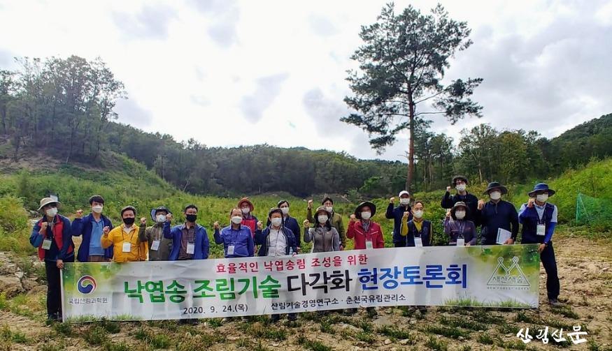 1.낙엽송 조림기술 다각화 현장토론회.jpg