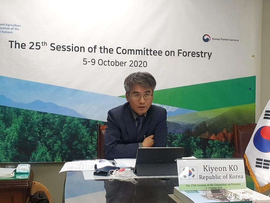 사진1_산림청 고기연 국제산림협력관 (FAO COFO) 토론 장면.jpg
