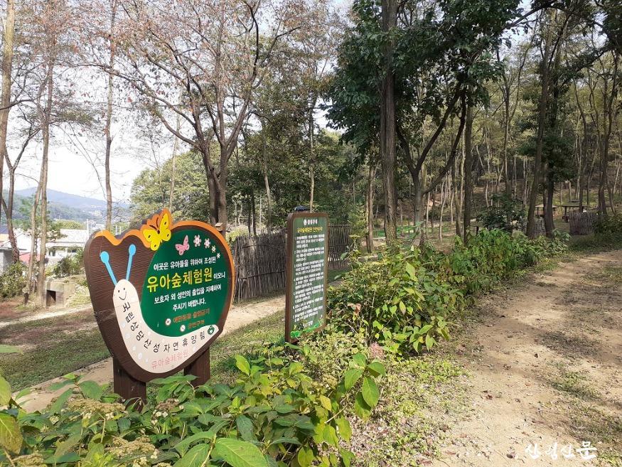 유아숲체험원.jpg