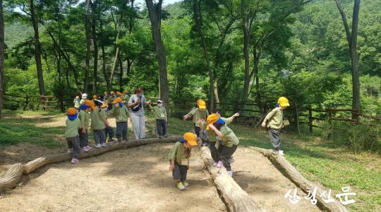 유아숲체험.jpg