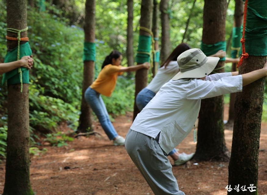 (사진) 국립산림치유원 숲치유프로그램.jpg