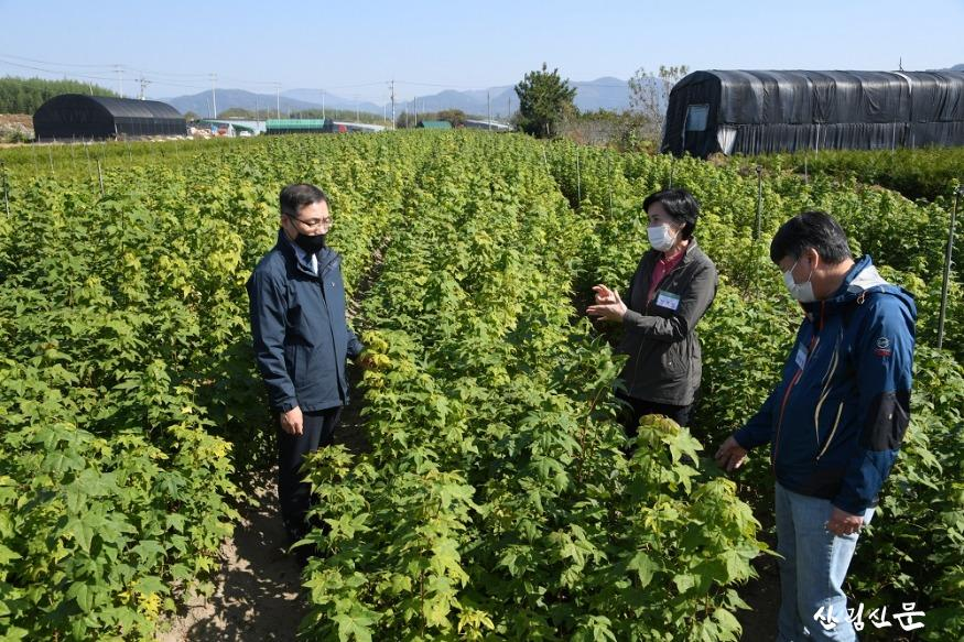 사진3_최병암 산림청 차장(왼쪽) 민유양 묘장 방문 묘목 생육상황 살펴 봄.JPG