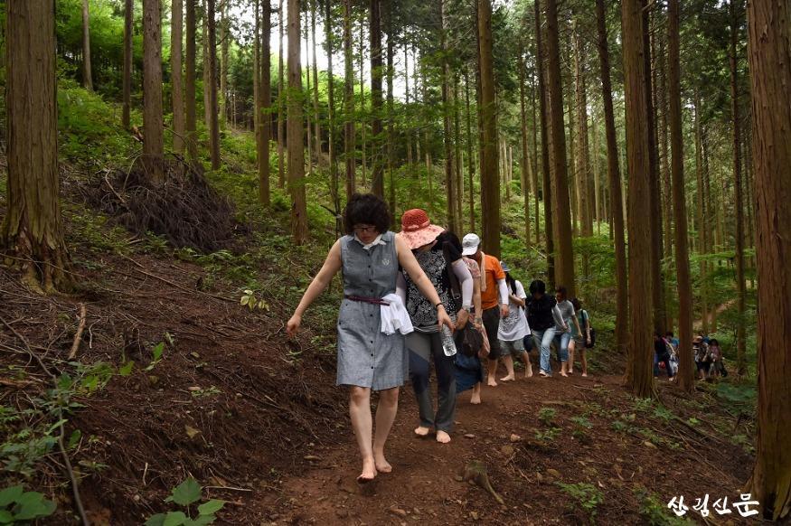 치유의 숲에서 맨발로 걷기.JPG