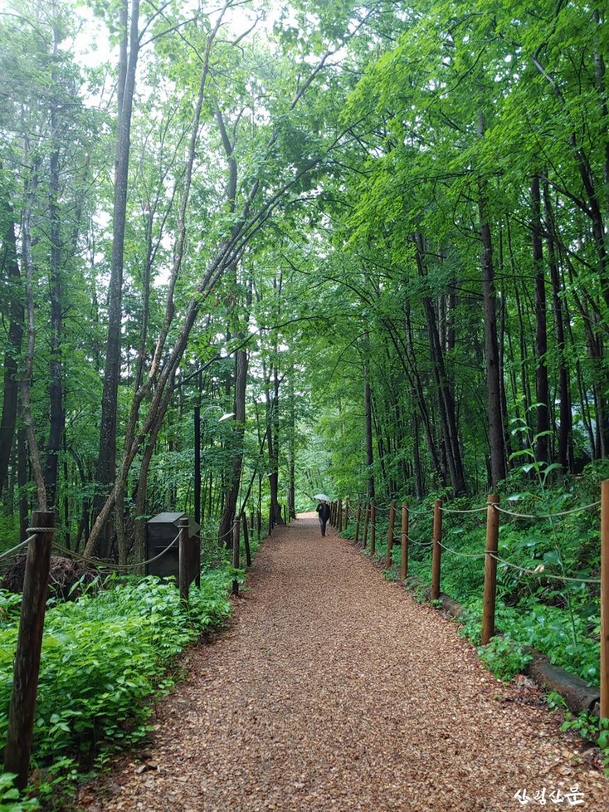 1.국가숲길 관련 사진.jpg