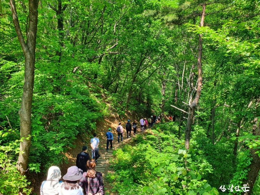 사진1_제3회 산림치유 프로그램 경진대회 개최.jpg