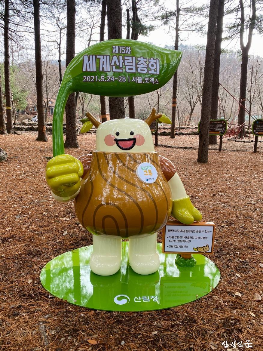 사진1_국립유명산자연휴양림 그루 사진무대 조성.jpg