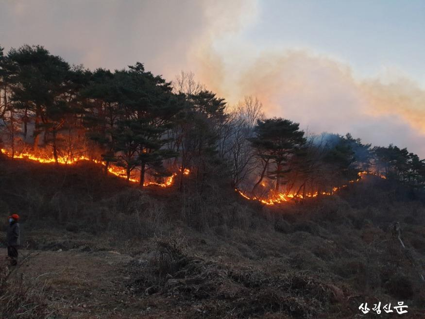 (산림청 제공) 경북 영덕(오촌리) 산불1.jpg
