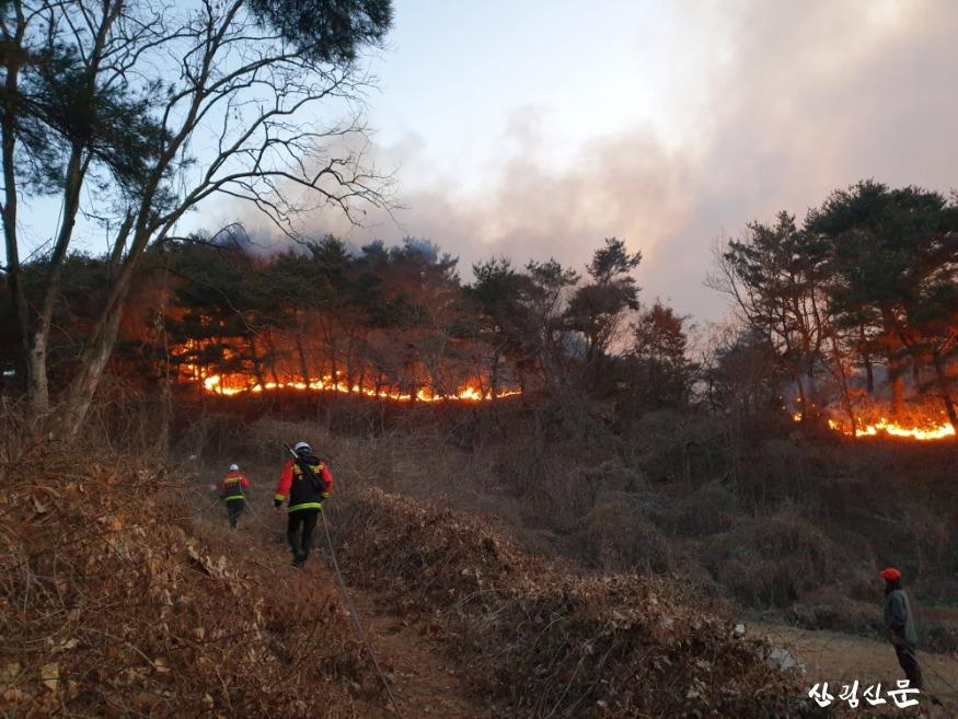 (산림청 제공) 경북 영덕(오촌리) 산불2.jpg