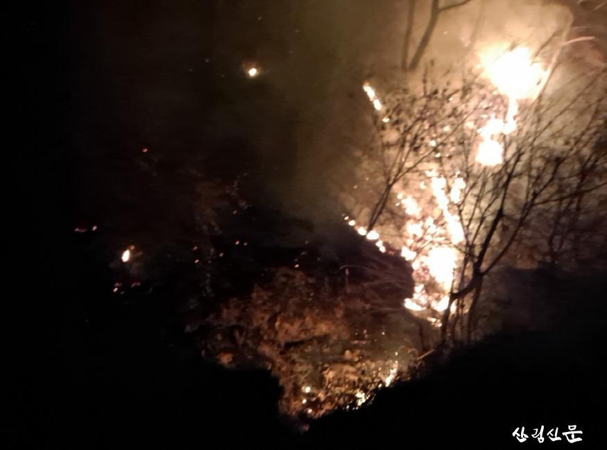 (산림청 제공) 경북 영덕군 창수면 산불2.jpg