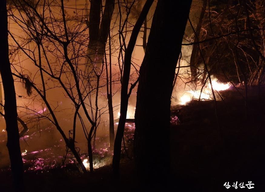 (산림청 보도자료) 경북 영덕군 영덕읍 산불2.jpg