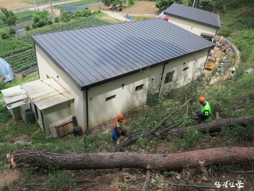 (관련사진2) 산림민원 해결사 숲가꾸기패트롤 선발(1.13.).JPG