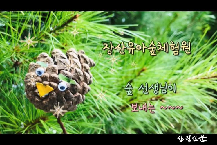 사진3_산림교육 동영상.jpg