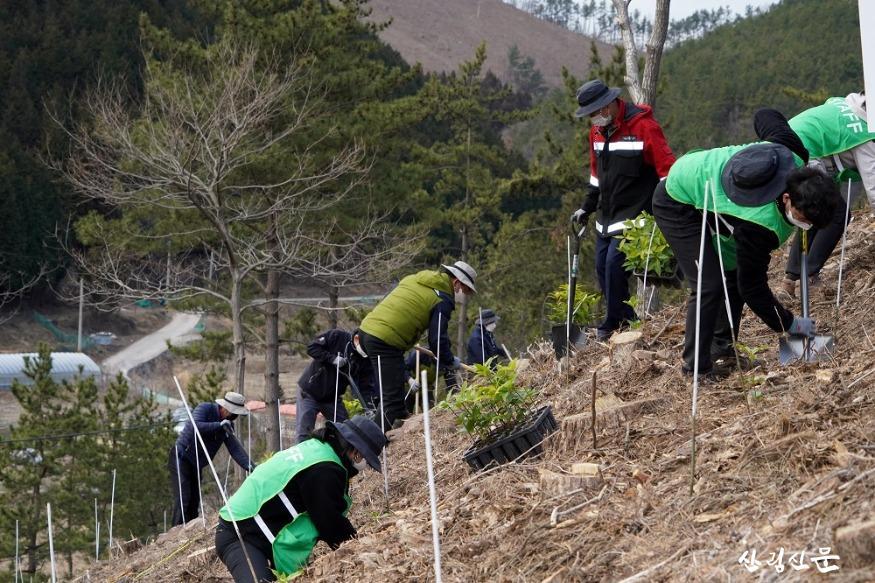 사진4_2050 탄소중립 달성을 위한 2021년 첫 나무심기.JPG