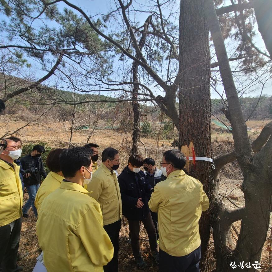 사진1_최병암 산림청 차장이 23일 전남 여수시 소 나무재선충병 방제사업장 현장점검을 하고있다..jpg