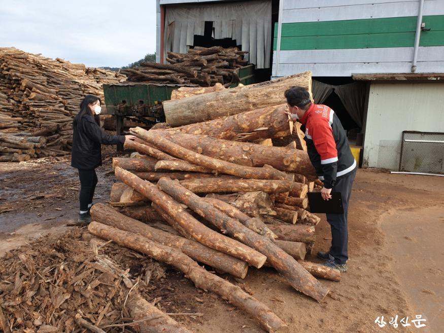 소나무류 이동 특별단속 사진 1.jpg