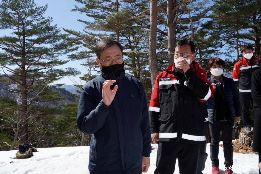 사진2_최병암 산림청 차장(왼쪽 첫번째) 울진군 금강소나무 생육 상황 살핌.jpg