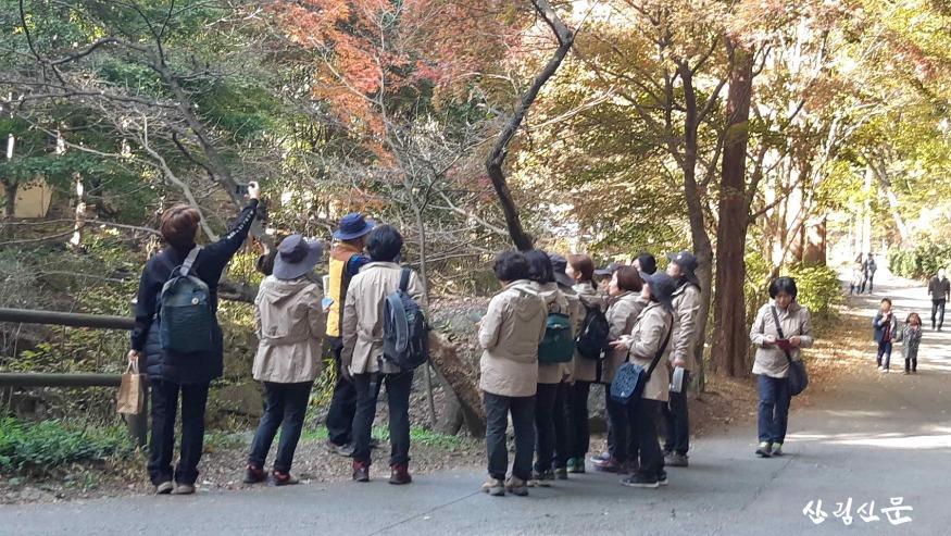 대전시, 어른도 어린이도 숲이 주는 사랑 배워요.jpg