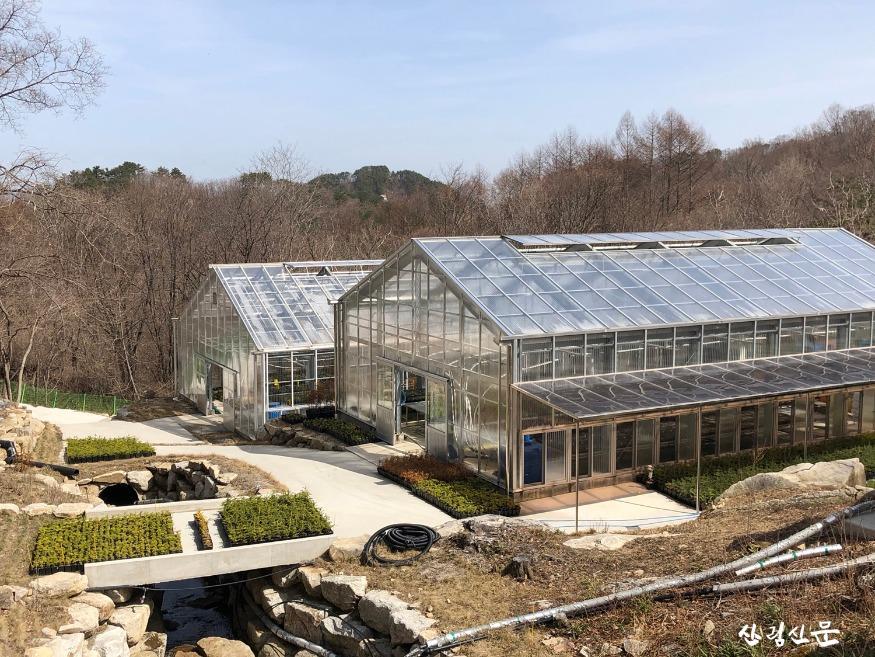 2.금원산 산림자원관리소 양묘현장.jpg