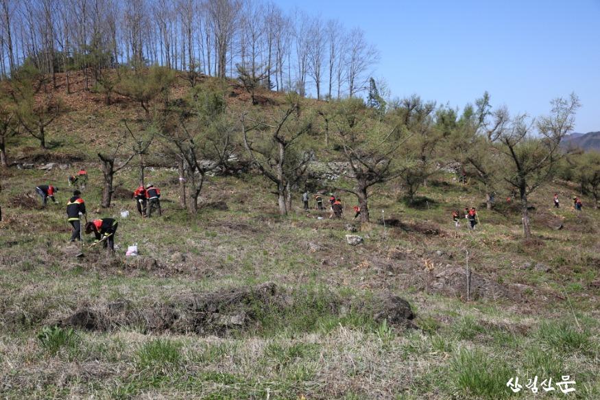사진자료 4 (식목일 직원들 식재모습).JPG